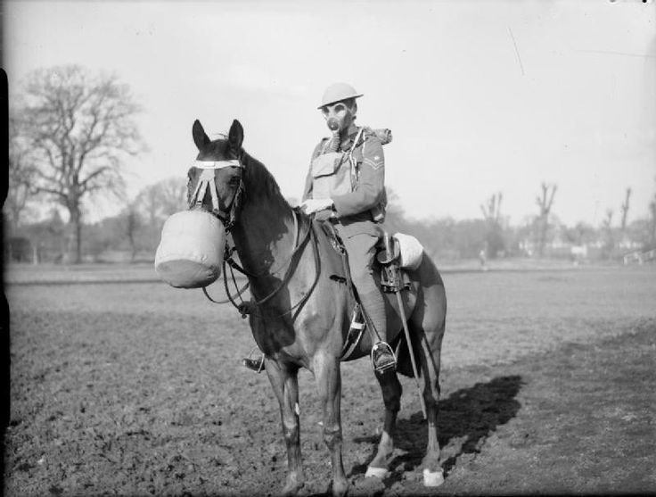 horse with gas mask coming to bf1 apocalypse
