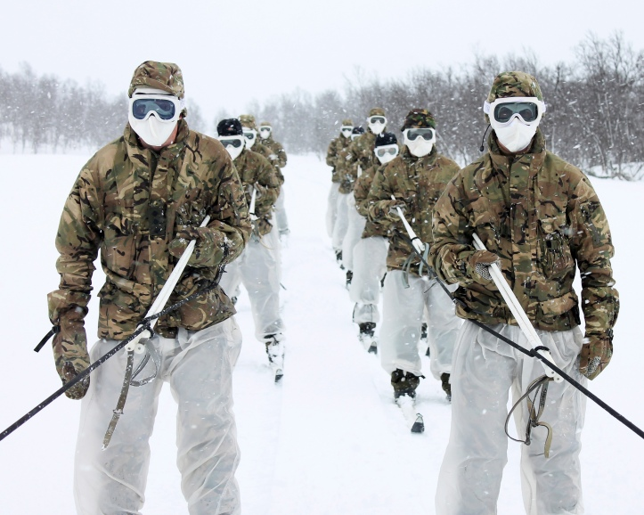 Royal Marine Reserves in Norway During Winter Training
